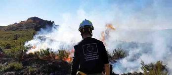 rescEU: EU establishes initial firefighting fleet for next forest fire season